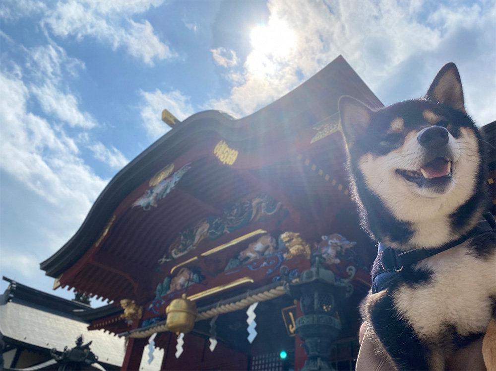 琥大朗 武蔵御嶽神社の階段