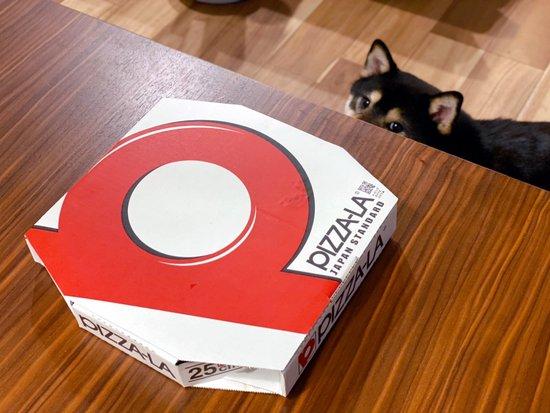 琥大朗 犬用ピザ