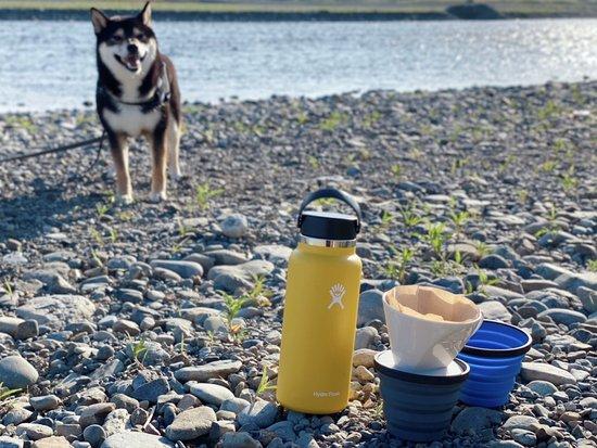 柴犬琥大朗とドリップコーヒー